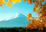 Autumn Mount Fuji